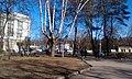 Bezhitskiy rayon, Bryansk, Bryanskaya oblast', Russia - panoramio (26).jpg