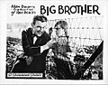 Big Brother film poster.jpg