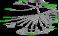 Biositemap iTools NCBC.png