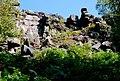 Birchen Edge from below - geograph.org.uk - 551933.jpg