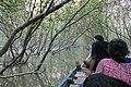 Bird Safari in Sunderbans (38326578521).jpg