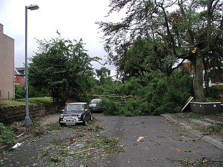 Damage from the Birmingham tornado of 2005. An unusually strong example of a tornado event in the United Kingdom, the Birmingham Tornado resulted in 19 injuries, mostly from falling trees. Birmingham tornado 2005 damage.jpg