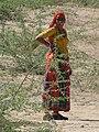 Bishnoi Woman.JPG