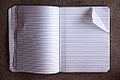 Blank Pages In An Open Notebook (4812269151).jpg