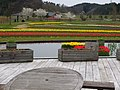 Blume Messe Akita (ブルーメッセあきた) - panoramio.jpg