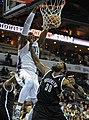 Bobcats vs Nets 6 (cropped).jpg