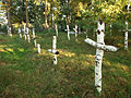 Bolekhiv Sich riflemen mass grave-2.JPG