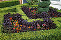 Border hedge and flowers Capel Manor College Gardens Enfield London England 2.jpg