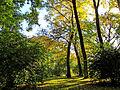 Botanička bašta Jevremovac, Beograd - jesenje boje, svetlost i senke 04.jpg