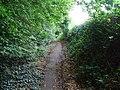 Bowesden Lane, near Shorne - geograph.org.uk - 1399182.jpg