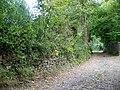 Bridleway, Combe Hay - geograph.org.uk - 1562677.jpg