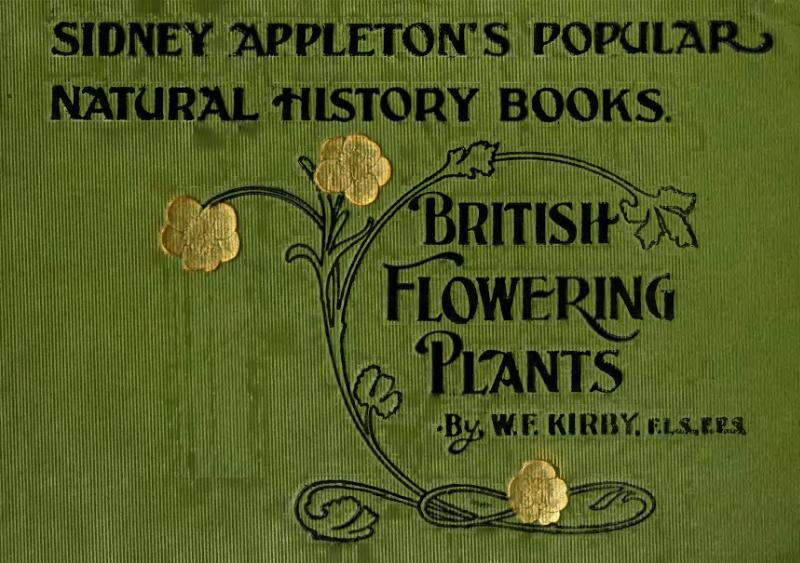 File:British Flowering Plants.djvu