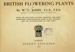 British Flowering Plants