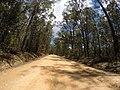 Brooman NSW 2538, Australia - panoramio (146).jpg