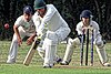 Buckhurst Hill CC v Dodgers CC at Buckhurst Hill, Essex, England 68.jpg