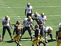 Buffaloes on offense at Colorado at Cal 2010-09-11 52.JPG