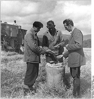 Frankenblick - Image: Bundesarchiv Bild 183 57903 0001, LPG Seltendorf, Ernte, Kontrolle des Korns