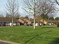 Bungalows on The Meadway, Highcliffe - geograph.org.uk - 365868.jpg