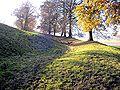 Burgstall Dasing 4.jpg