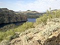 Butcher Jones Trail - Mt. Pinter Loop Trail, Saguaro Lake - panoramio (97).jpg