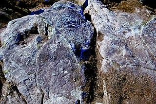 Petroglyphs of Bouza Abadín