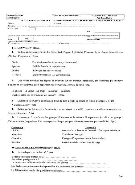 Filecepe 20100001pdf Meta