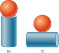 CNX UPhysics 09 06 prob14 img.png