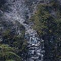 COLLECTIE TROPENMUSEUM Vulkaanlandschap TMnr 20018522.jpg
