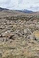 C Hill Trail , Carson City - panoramio (12).jpg