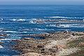 Cabo Silleiro. Galiza S3.jpg
