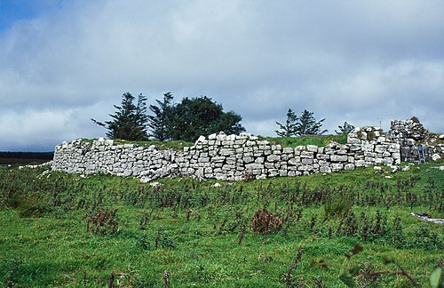 Ruins of the O'Davoren law school at Cahermacnaghten, County Clare Cahermacnaghten O Davoren Law School Burren County Clare 1997 09 02.jpg