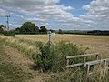 Cambridgeshire doing its bit - geograph.org.uk - 1461007.jpg