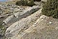 Camino carretero en Castellar de Meca 34.jpg