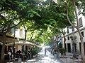 Canaries Tenerife Santa Cruz Calle Bethencourt Alfonso - panoramio.jpg