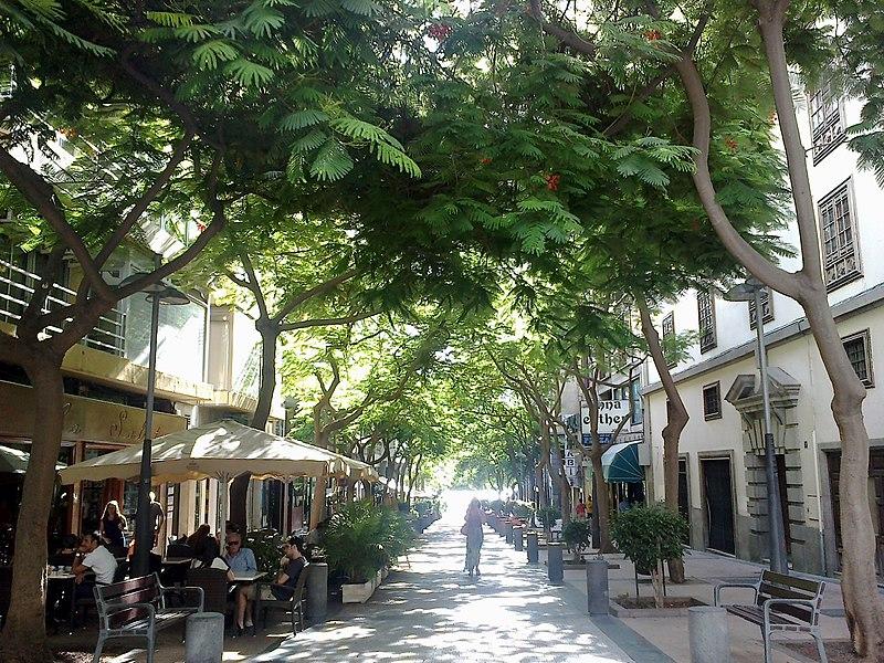 File:Canaries Tenerife Santa Cruz Calle Bethencourt Alfonso - panoramio.jpg