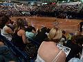 Canberra roller derby.jpg
