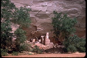 Canyon de Chelly National Monument CACH2667.jpg