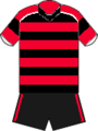 Cardiff jersey 2014-15.png