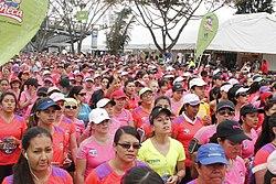 Carrera de la Mujer 2014 (15382529832).jpg