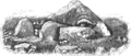 Carrowmore Megalithic Cemetery P52 Drawing by Charles Elcock 1886.png