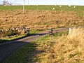 Cattle grid on the road from Corsock Bridge to Glaisters - geograph.org.uk - 586641.jpg