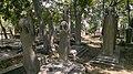 Cemeteries in Istanbul - Islamic cemeteries in Turkey 01.jpg