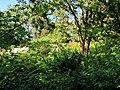 Central Park, New York, NY, USA - panoramio (31).jpg