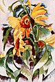 Charles Demuth - Sunflowers - Dec 1922 Shadowland.jpg