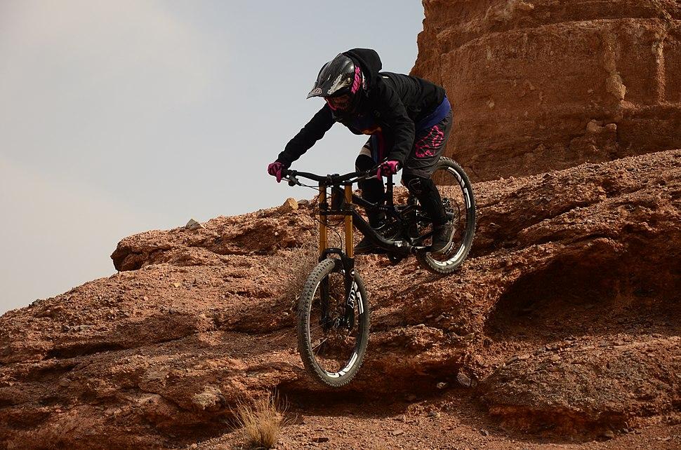 Downhill mountain biking - Howling Pixel