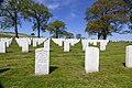 Chattanooga National Cemetery 1.jpg
