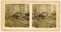 Chemin de fer Decauville dans la forêt.png