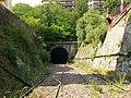 Chemin de fer de Petite Ceinture - tunnel.jpg