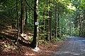 Chemin des Eaux Rousses.jpg