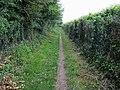 Chess Valley Walk - geograph.org.uk - 951348.jpg